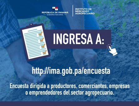 WEB ENCUESTA -WEB_Mesa de trabajo 1